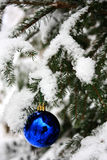 Christmas tree. A blue christmas ball on a fir tree covered of snow stock images