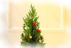 Christmas tree. A very small christmas tree beside the door royalty free stock images