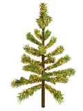 Christmas tree. With shining bough Royalty Free Stock Image