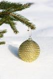 Christmas tree. Christmas bauble on christmas tree Stock Images
