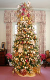 Christmas Tree. A unique Christmas tree decorates a room with pink carpet Royalty Free Stock Image
