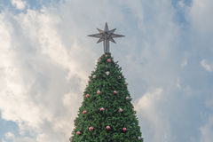 Christmas tree against blue sky Stock Image