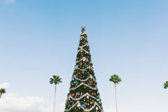 Christmas Tree Against Sky Stock Image
