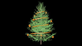 Christmas tree with alpha. Channel (Cinema 4d stock video footage