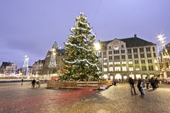 Christmas Tree in Amsterdam the Neth Stock Photography