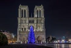 Free Christmas Tree At Notre Dame De Paris Royalty Free Stock Photos - 63626268