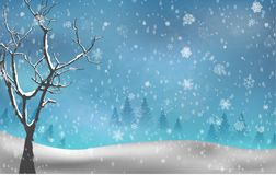 Christmas tree autumn on winter background Stock Images