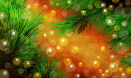Christmas Tree Background. A Christmas scene background with trees lights and warm tones Stock Photography