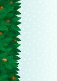 Christmas tree background. Vector  Card of christmas fir tree,  cone, snowflakes with copy space for text Royalty Free Stock Image