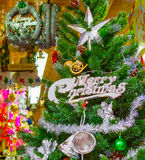 Christmas tree background Card Design Stock Image