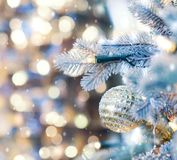Christmas tree background and Christmas decorations royalty free stock images