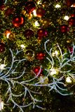 Christmas tree background. Christmas tree in festival in December Royalty Free Stock Images