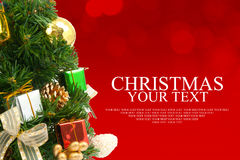 Christmas tree background with a red ornament gift box berries a Stock Image