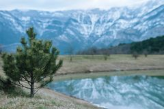 NChristmas tree on the background of snow-capped mountains and a lake with reflection.n royalty free stock photos