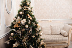 Christmas tree at the background of white sofa Stock Photo