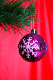 Christmas tree with ball Royalty Free Stock Image