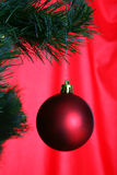 Christmas tree with ball Stock Photo