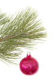 Christmas tree and ball. Over white Royalty Free Stock Image