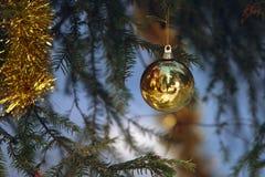 Christmas tree with ball Stock Photos