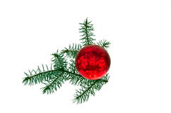 Christmas tree ball. On white background Stock Photos
