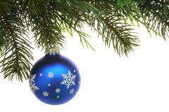 Christmas tree and Ball Stock Image