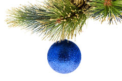 Christmas tree ball Stock Image