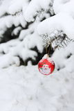 Christmas Tree Ball Decoration - Stock Photo Royalty Free Stock Images