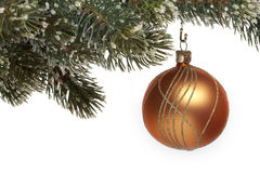 Christmas tree ball on fir branch Royalty Free Stock Photography