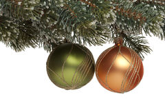 Christmas tree ball on fir branch Royalty Free Stock Images