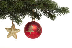 Christmas tree ball on fir branch Royalty Free Stock Image