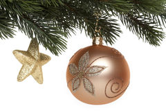 Christmas tree ball on fir branch Stock Image