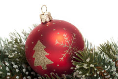 Christmas tree ball on fir branch Stock Photography