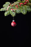 Christmas tree ball red black Stock Photography