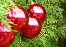 Christmas tree balls. With Santa Claus reflected by the light Stock Photo