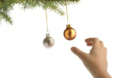 Christmas tree balls and hand. Christmas tree branch with balls and children hand on white background stock photography