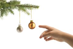 Christmas tree balls and hand. Christmas tree branch and children hand reaching balls on white background royalty free stock photos