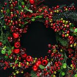Christmas tree branches and berries background stock photos