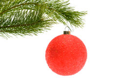 Christmas tree with bauble Stock Photography