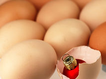 Christmas Tree bauble comes from a broken egg. Royalty Free Stock Photos