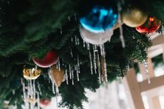 Christmas Tree Baubles Shallow Focus Photography stock photography