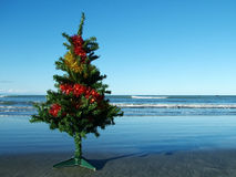 Christmas tree on the beach  Stock Photos