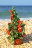 Christmas tree on the beach Royalty Free Stock Photo