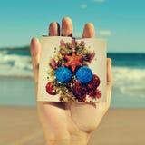 Christmas tree on the beach Stock Image