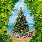 Christmas Tree Beach Celebration. On a tropical island with presents and gifts with framed by plants from the tropics as a concept for winter holidays or stock illustration