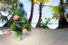 Christmas tree on beach Stock Images