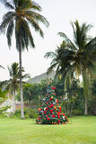 Christmas Tree On Beautiful Tropical Background Royalty Free Stock Image