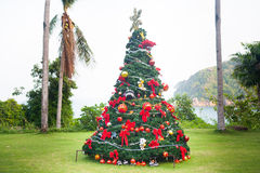Christmas Tree On Beautiful Tropical Background Stock Images