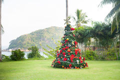 Christmas Tree On Beautiful Tropical Background Royalty Free Stock Images