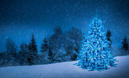 christmas tree in beautiful view background idea concept decoration  Royalty Free Stock Images