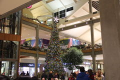 Christmas Tree. In Bellevue Square Mall , Bellevue city, WA Royalty Free Stock Photography